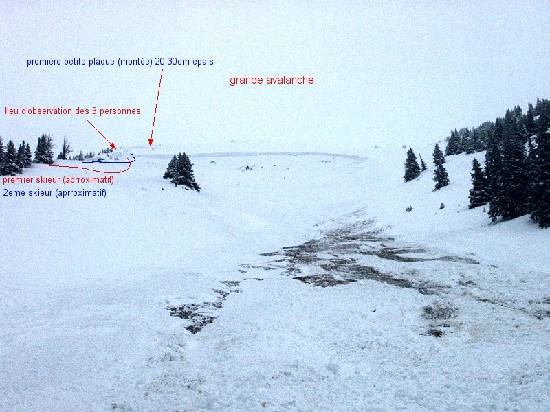 avalanches au mont d'Or du 2 mars 2002