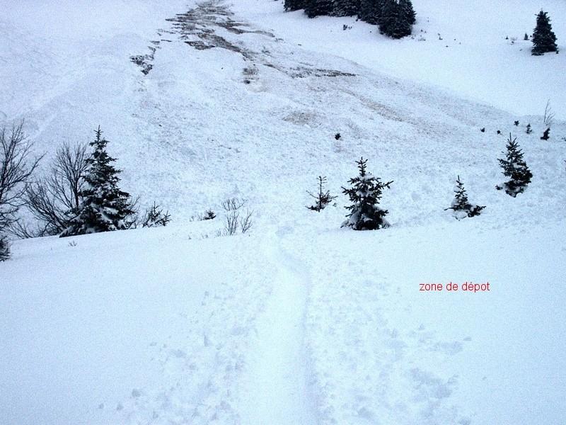 avalanche au mont d'Or du 2 mars 2002