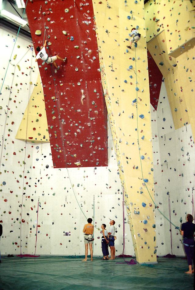 salle d'escalade Mont-Blanc escalade aux Houches 74310