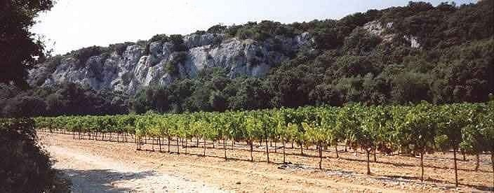 La barre rocheuse de Rocheford du Gard