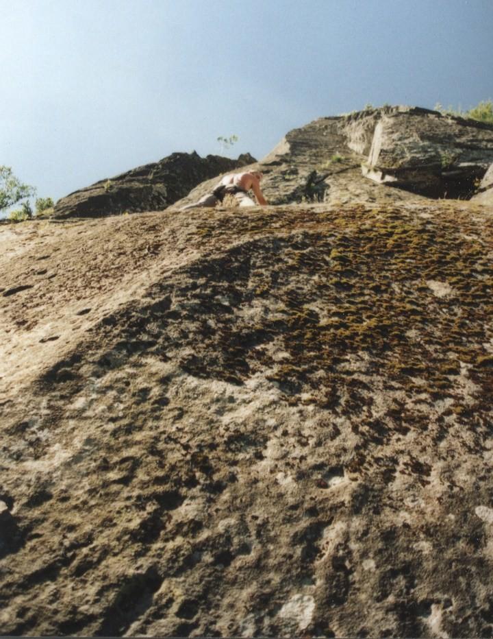 Dans une fissure du Capussin (Mont-Dore)