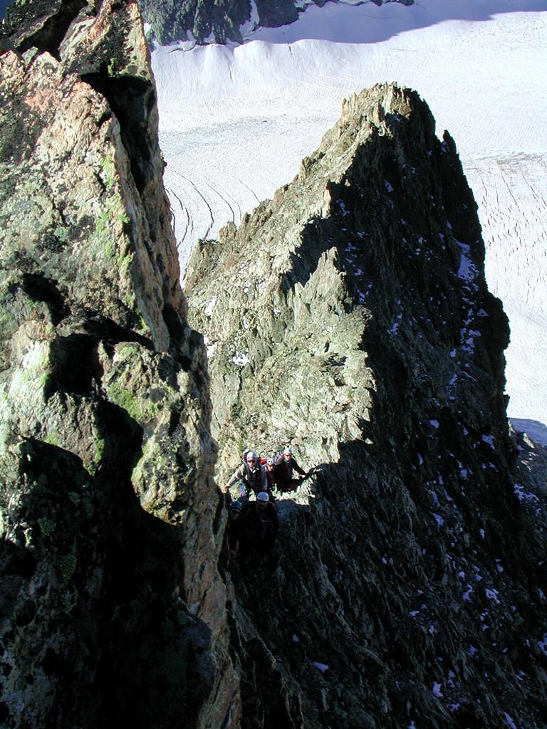 Sur l'arête sud du pic du glacier blanc - 3525m - Ecrins