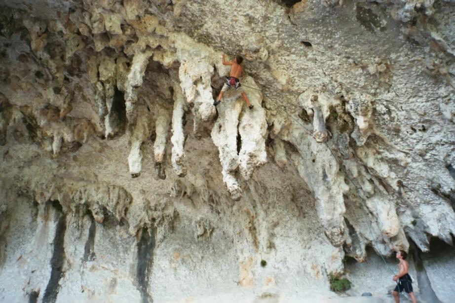 Grotte des branches
