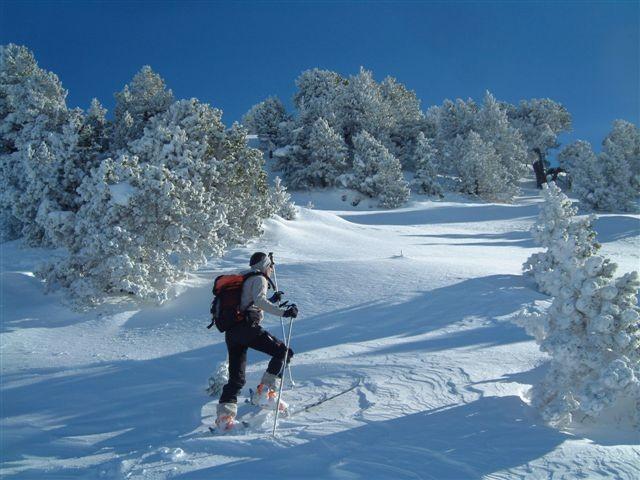 Montée au Roc de Poyez - Bubu au dessus du Col de Rossanaz
