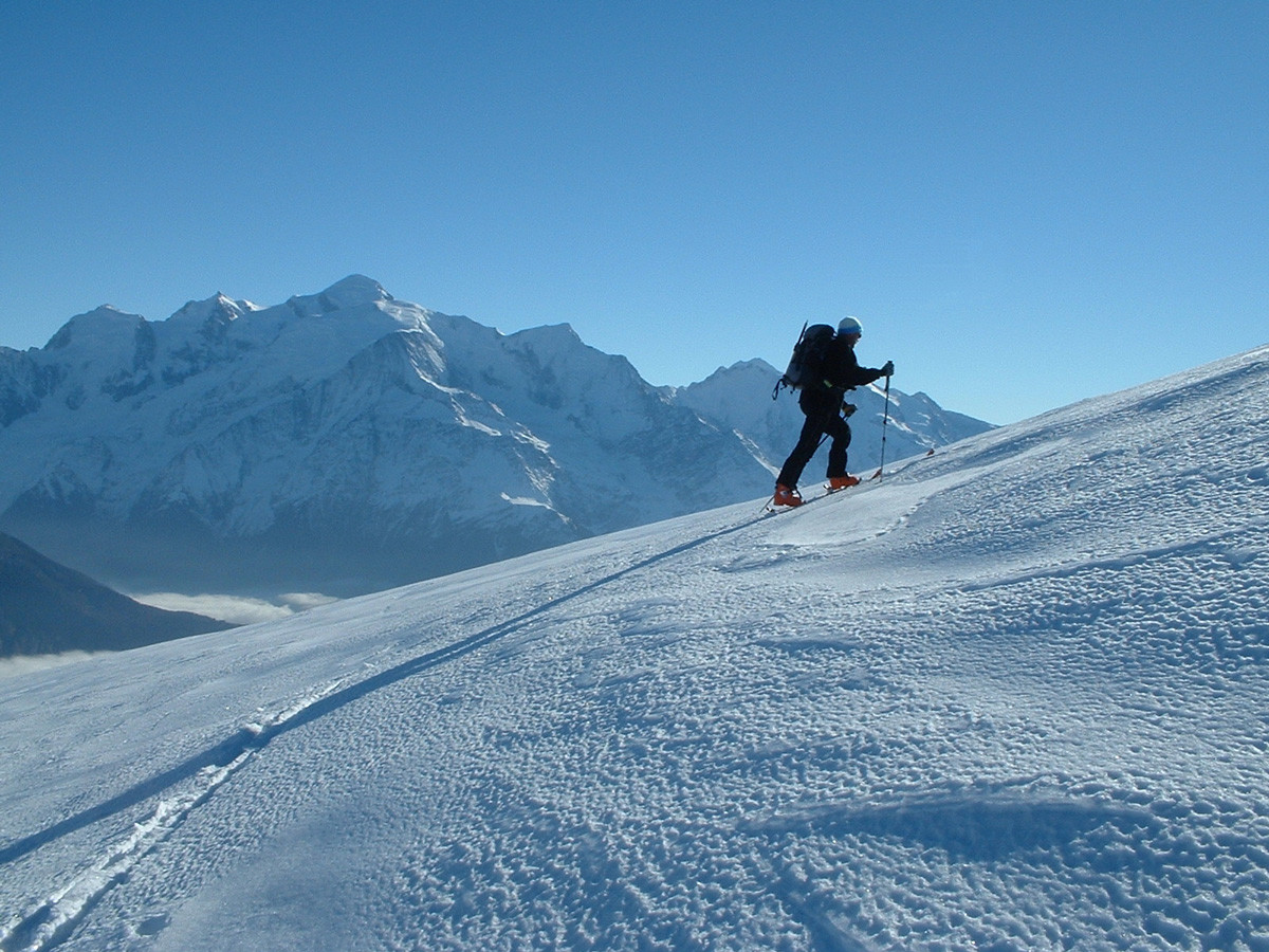 Filu devant le Mont-Blanc