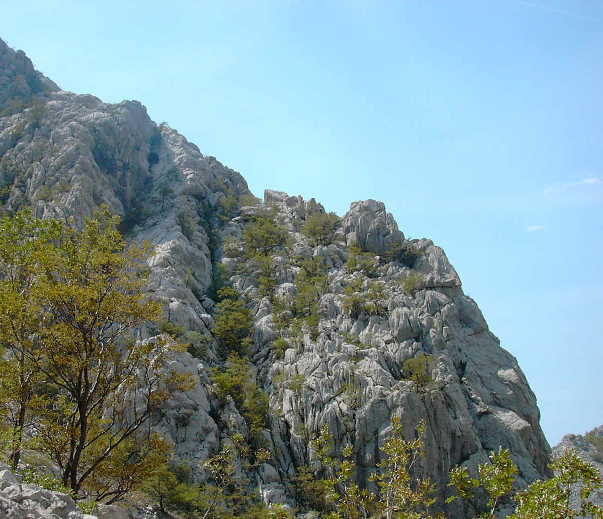Paklenica : Lapiaz geant et touffu