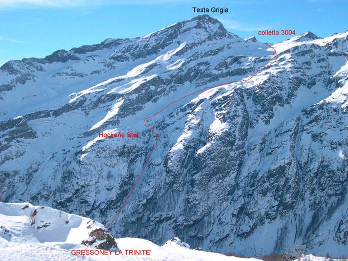 Linea di discesa dal colle Nord della Testa Grigia