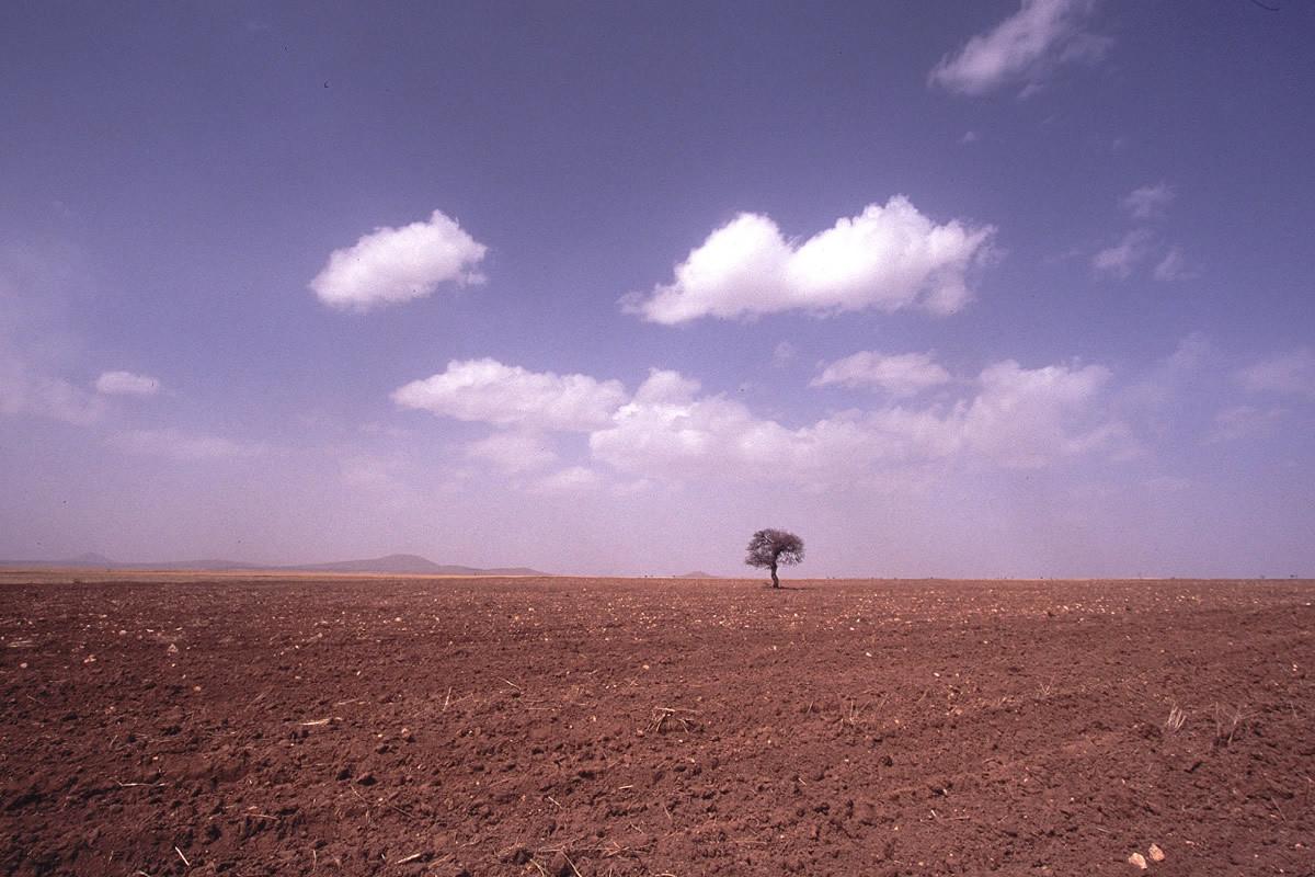 la solitude!