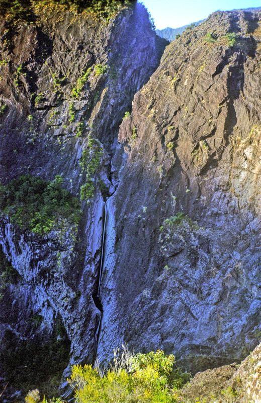 Canyon de Fleurs Jaunes, Piton de Sucre, Reunion