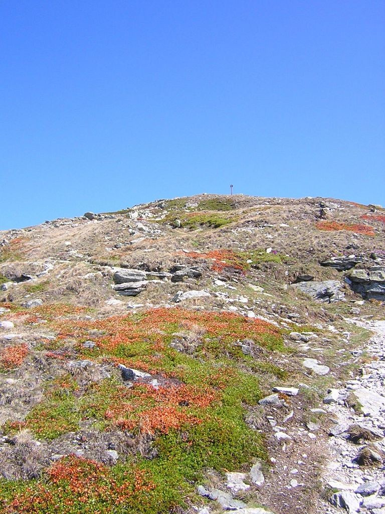 sommets du Illhorn