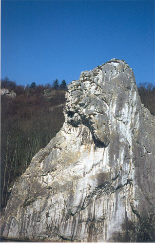FREYR - La Tête du Lion