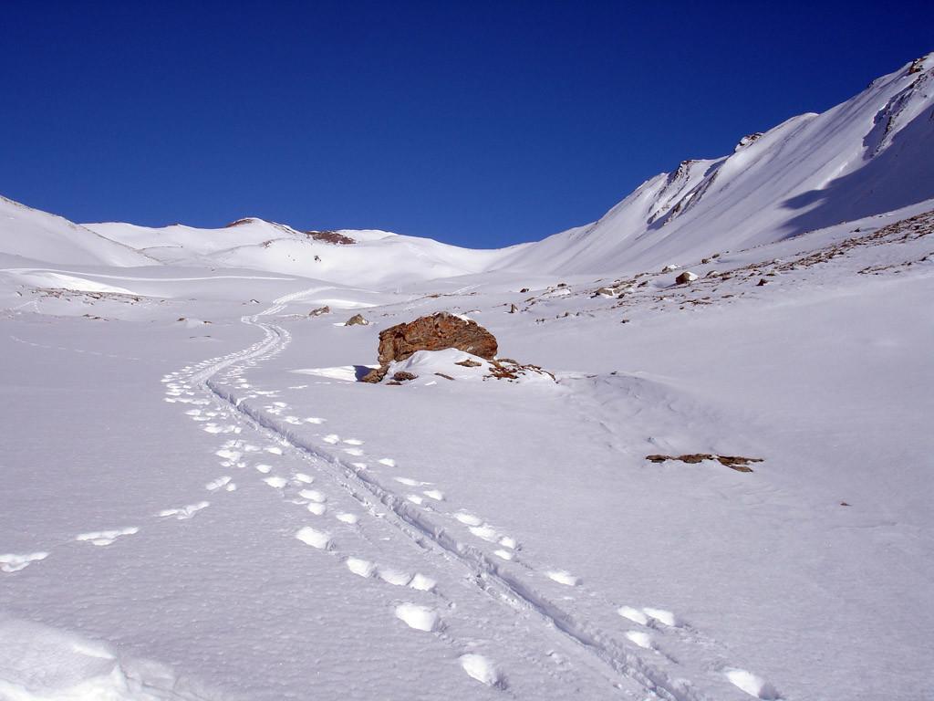 Nei pressi della Q. 2355 m sullo sfondo la cima del Sandhubel 2764 m.