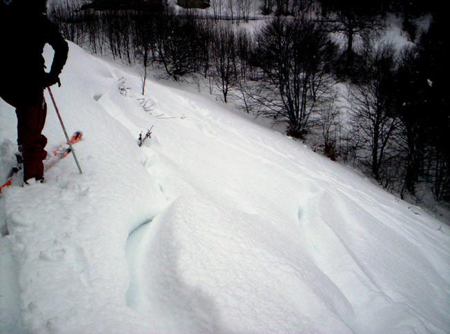 Orimento 1275 m.   29/01/2006