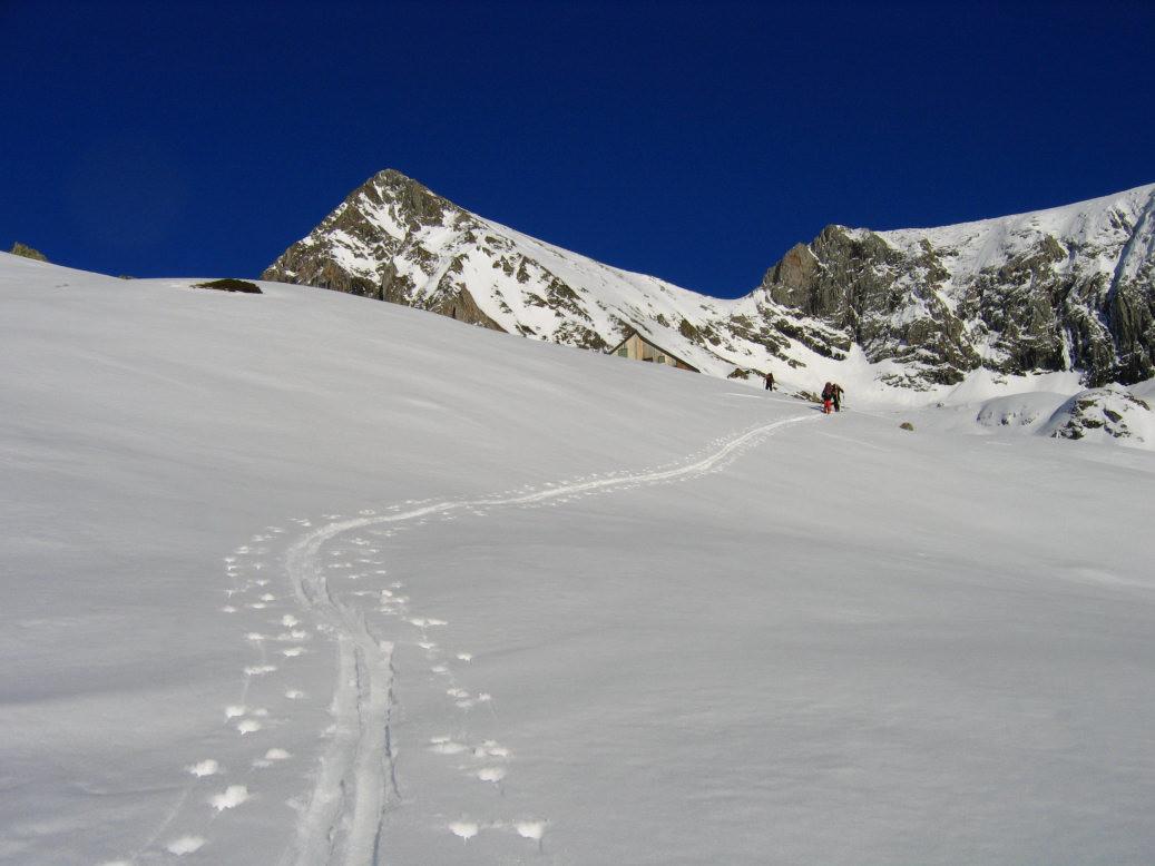 Mt Valier