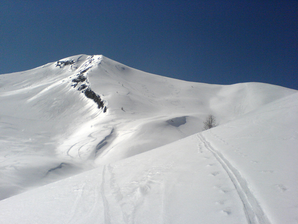 descente du Bonaparre