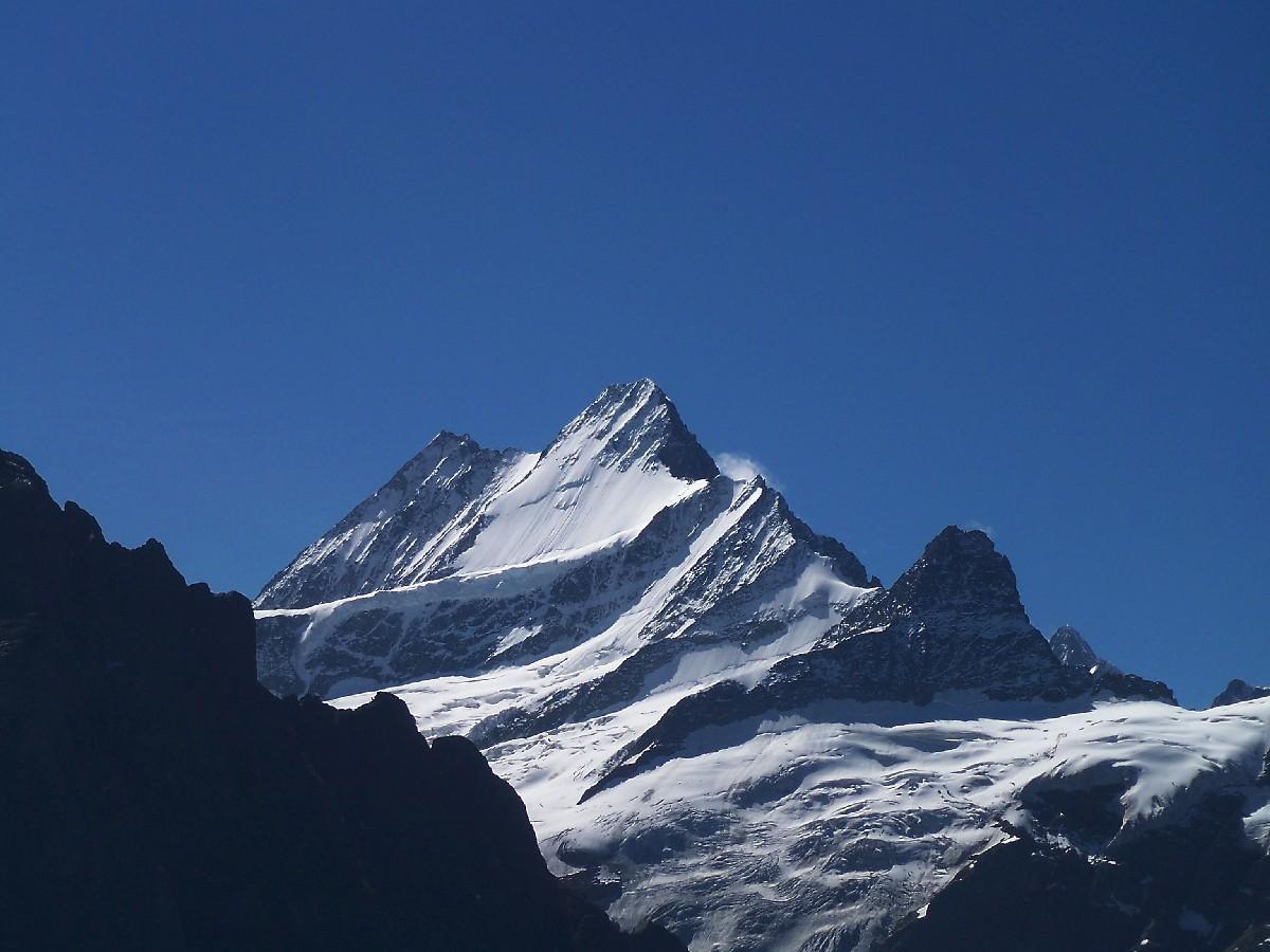 Lauteraarhorn (4042m) - Schreckhorn (4078m)