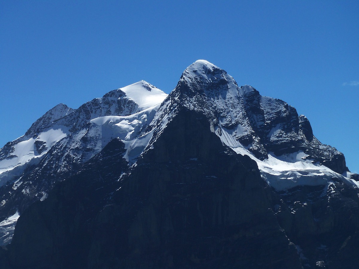 Le tryptique du Wetterhorn (3701m)