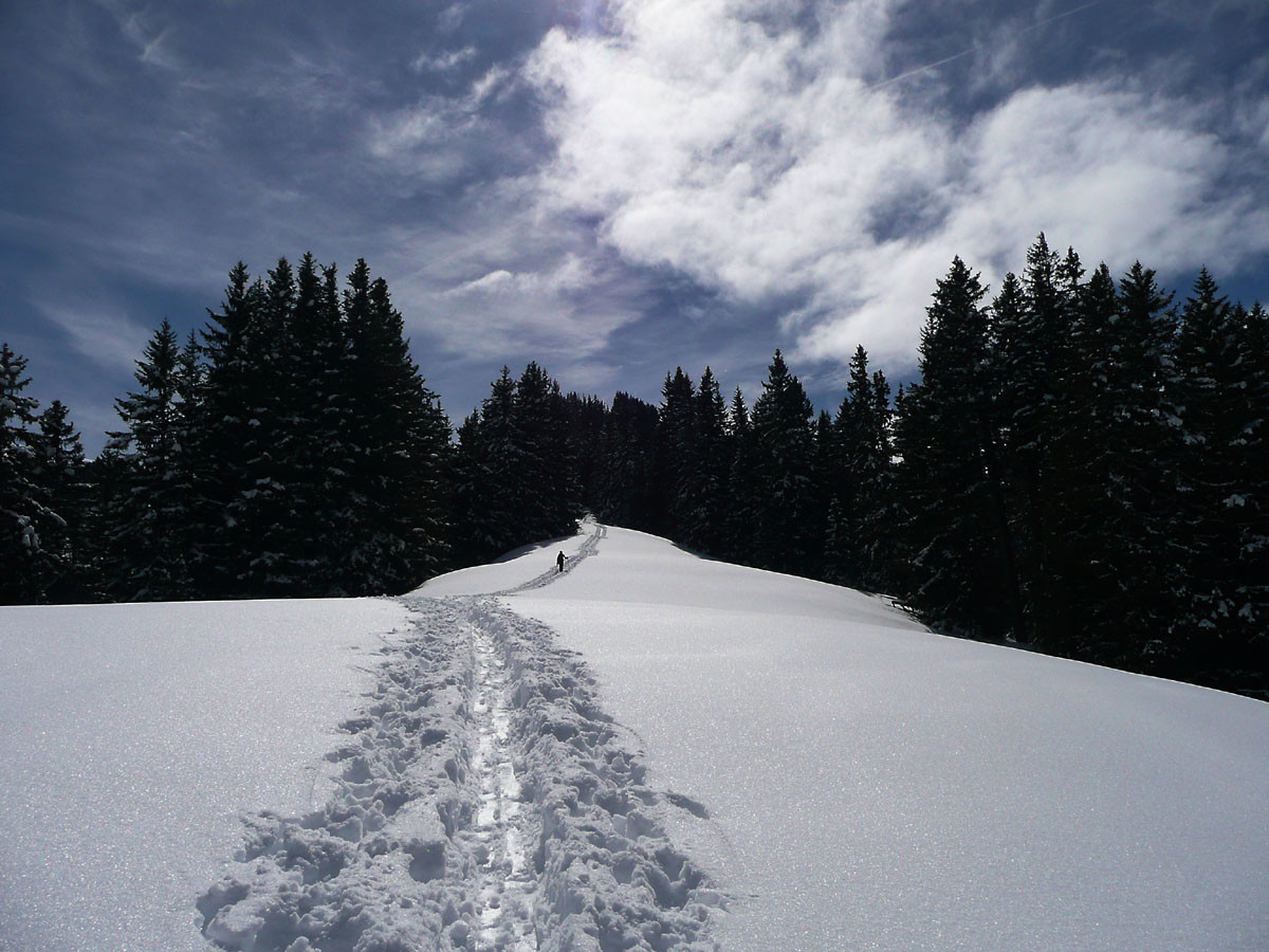 Croupe Nord du Niderhorn