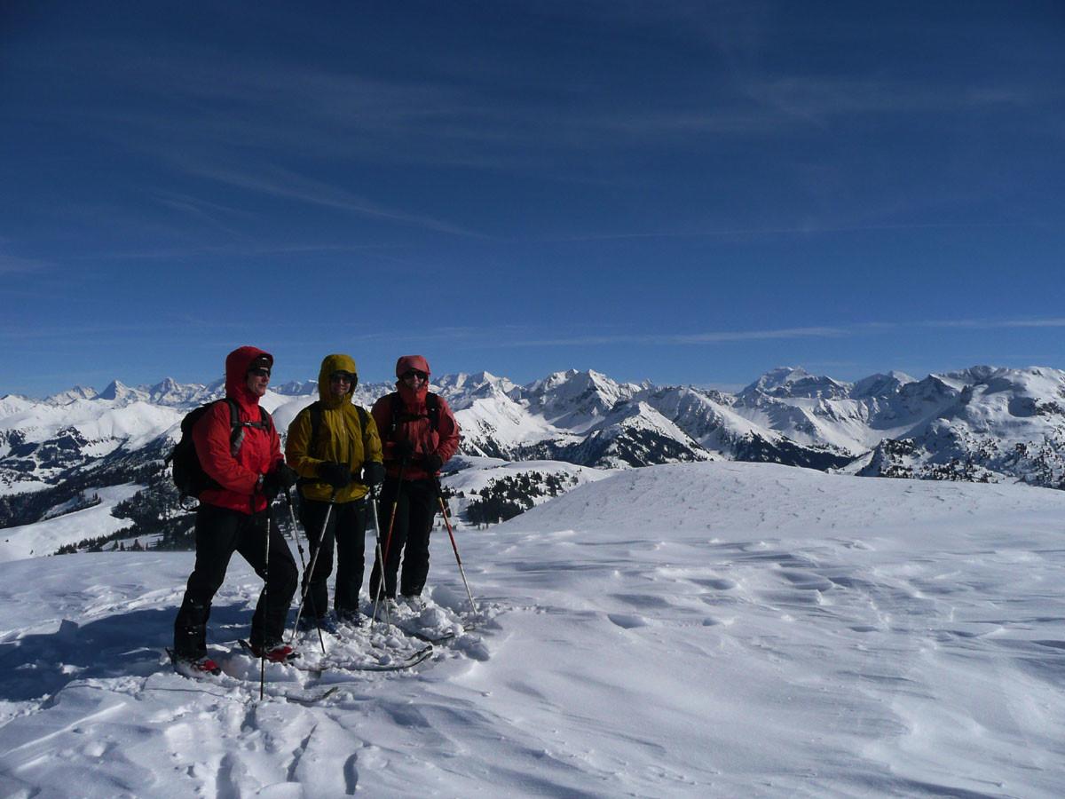 Vue sur l'Oberland depuis le Niderhorn