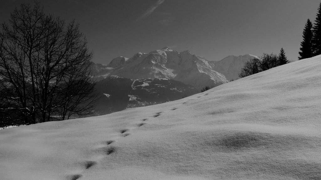 Mont (noir et ) Blanc