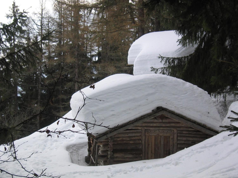 Que de neige cet hiver...