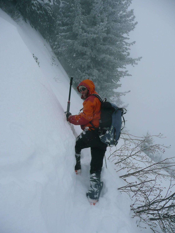 Ski extrème en forêt ?