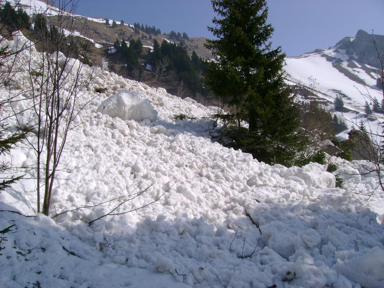 Grande Jumelle: l'avalanche descendue vers 10h30 sur le chemin qui mène à la Montagne de l'Au
