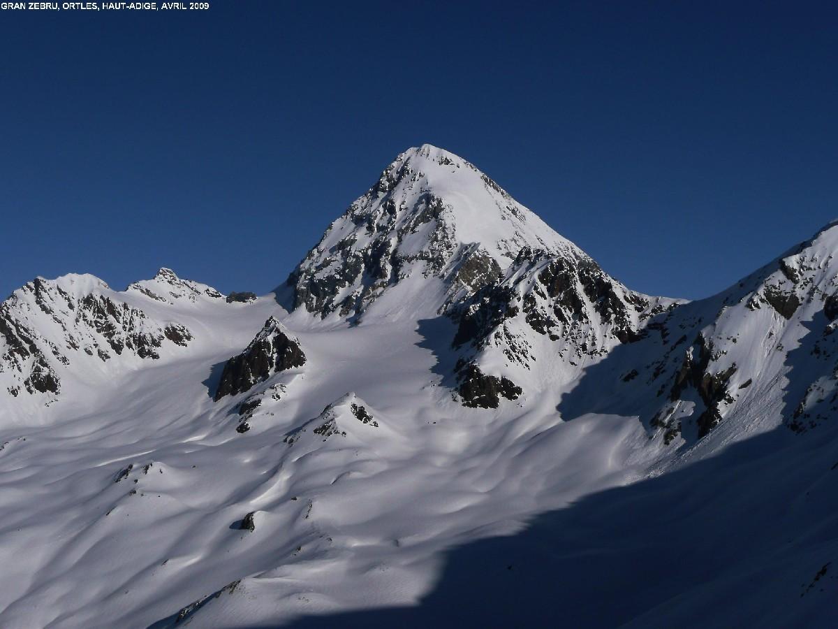 Gran Zebru vu de la montée au Cevedale