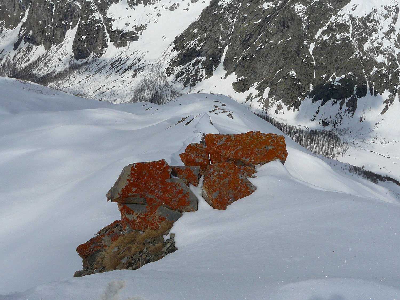 Lichens oranges sur fond de val Ferret