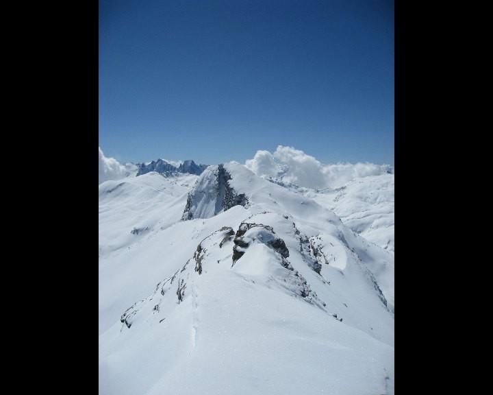 Du sommet, vue sur le Wissberg