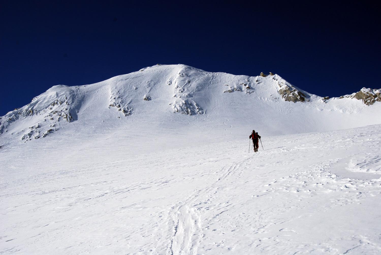 La pala del Monte Carè Alto 3462 m.