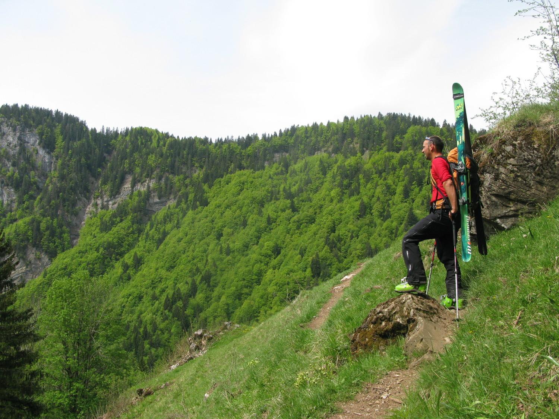 Verte prairie Verts skis : accord !