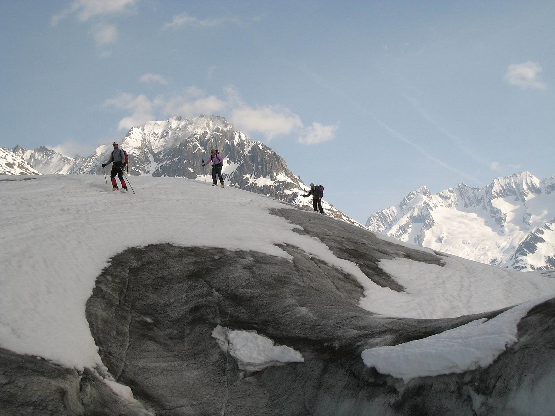 Rive gauche du glacier d'Aletsch