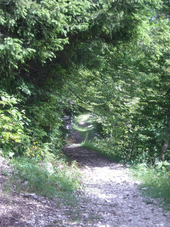 Vue sur le sympathique sentier d'accès.