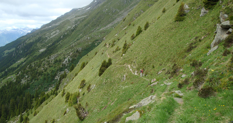 Val de Cam