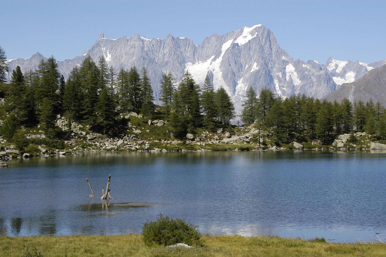 Lac d'Arpy..et les Jorasses