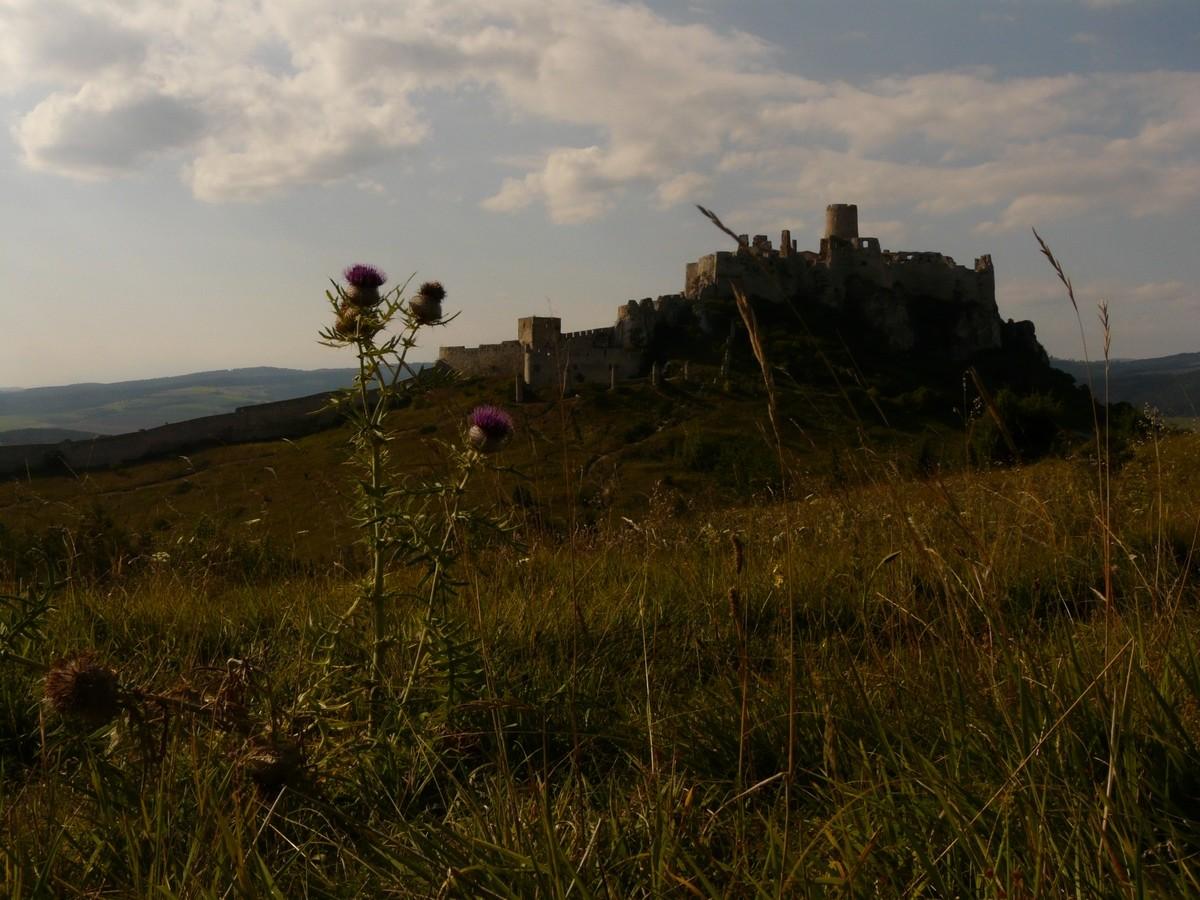 Château de Spiš - versant E