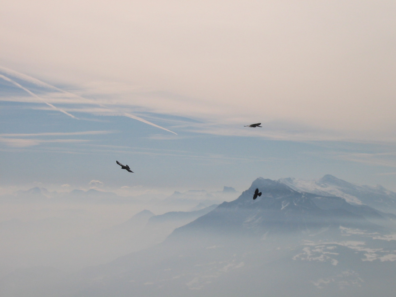 Vol au dessus de la Chartreuse