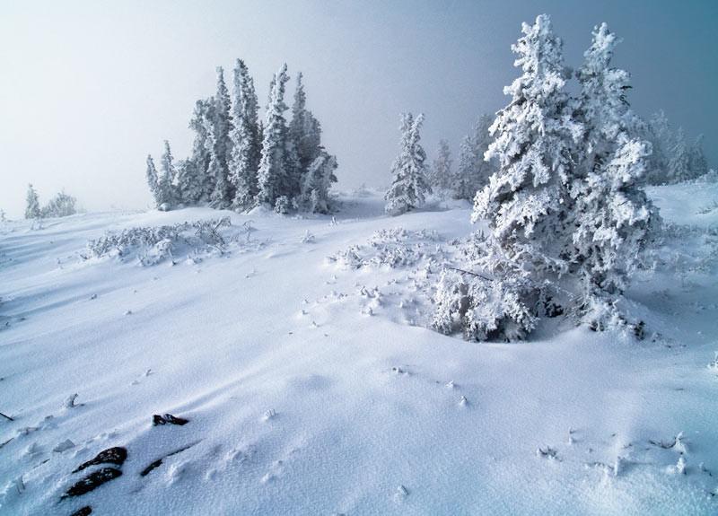 L hiver est bien la sur le plateau