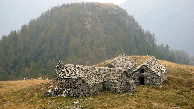 Alpe Albezzona / Ribia
