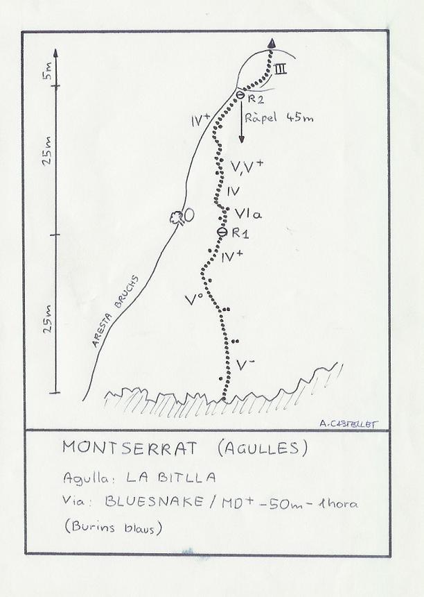 Topo Montserrat - Agulles, Bluesnake