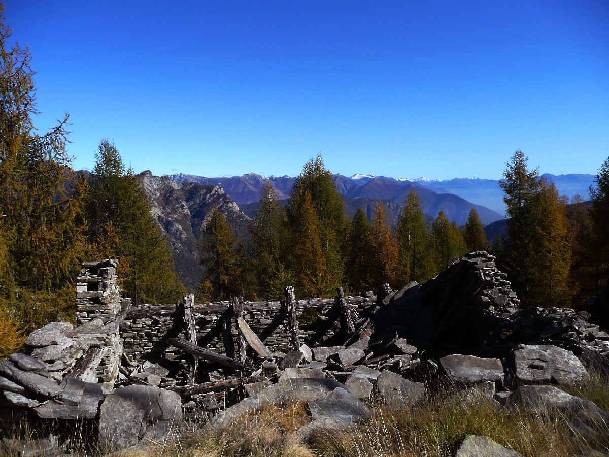 Alpe Lombardone