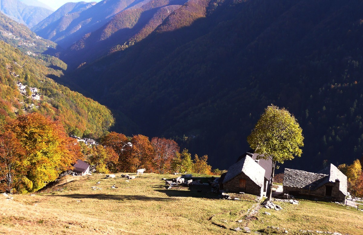Alpe Cavoo, Valle Onsernone, Tessin