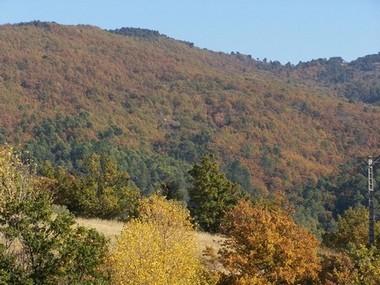 Vue des collines depuis le gîte
