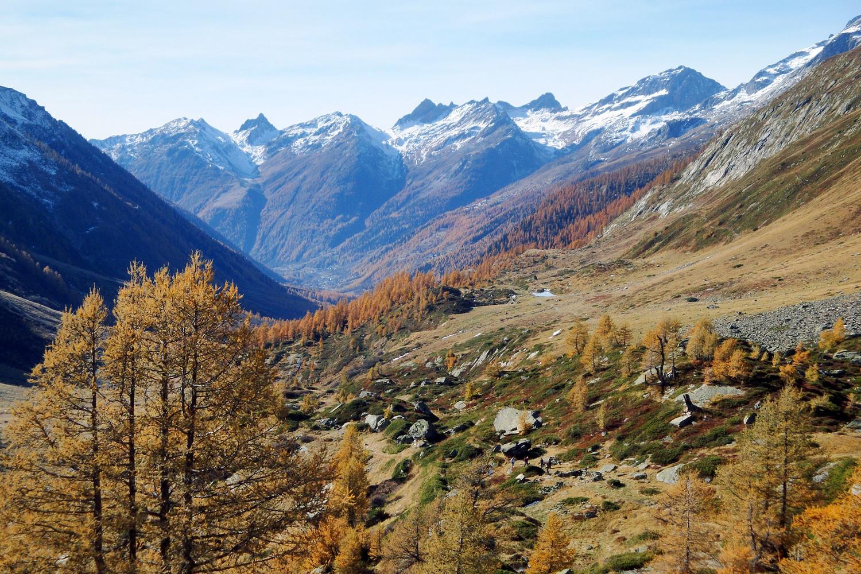 Le fond du Lotschental...du Niven au Ferdenrothorn