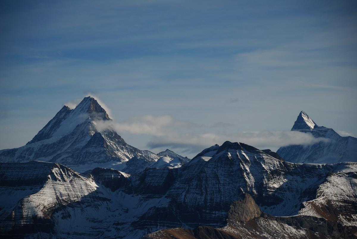 Schreckhorn (4086m) et Finsteraarhorn (4274m) vus de l'arête du Brienzergrat