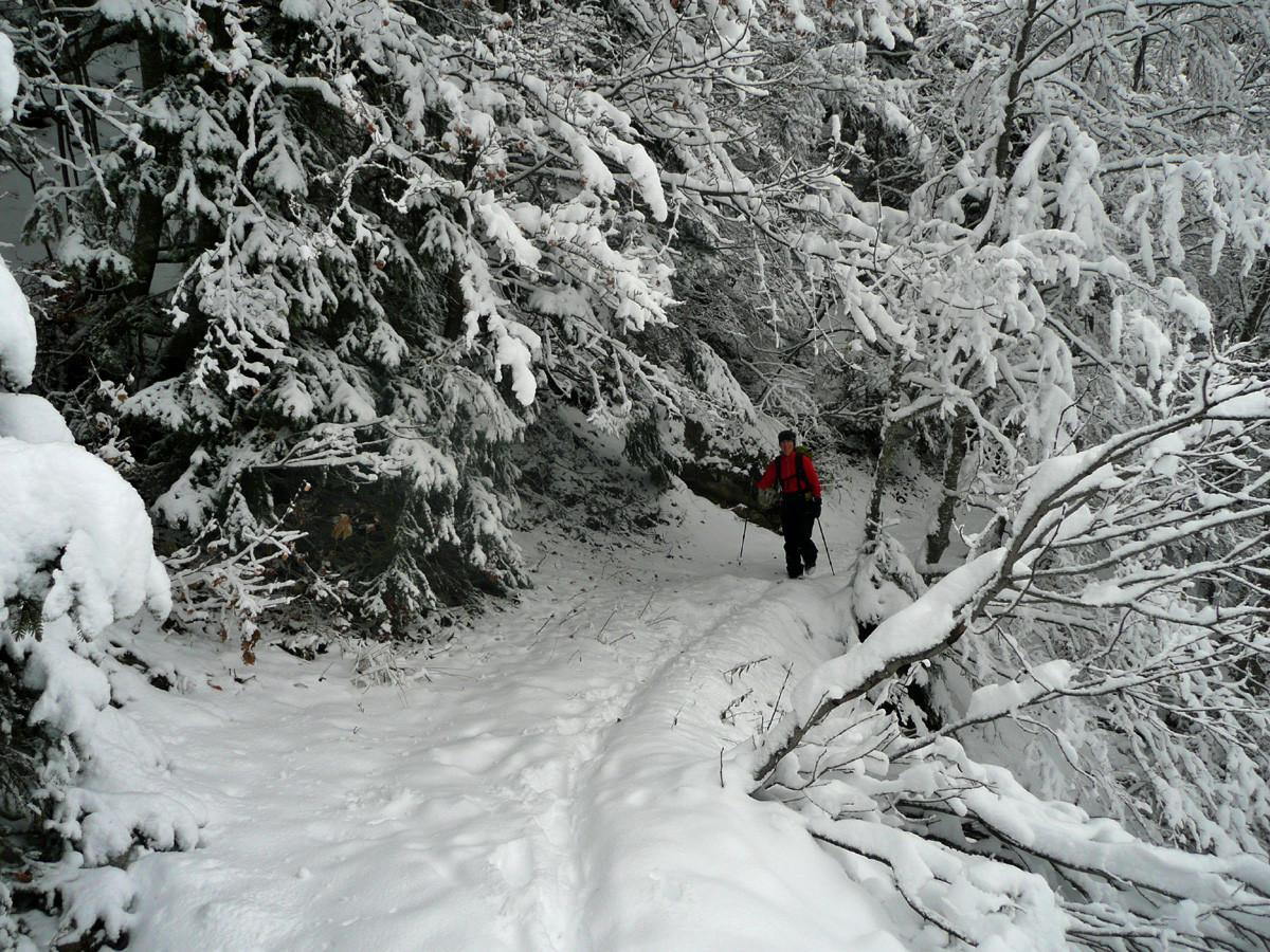 Montée au Col du Freu depuis la Vallée du Borne, vers 1400m