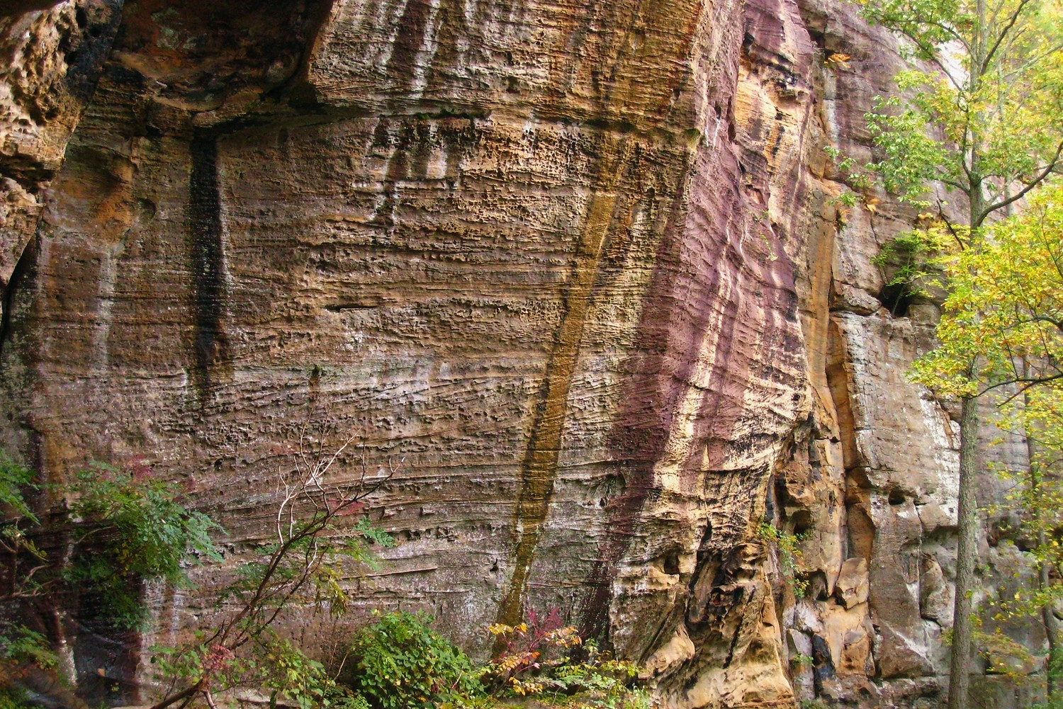 Bob Marley Crag, Red River Gorge, USA
