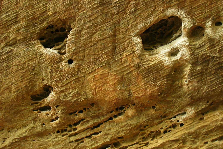 grès avec huecos, Roadside Crag, Red River Gorge, USA