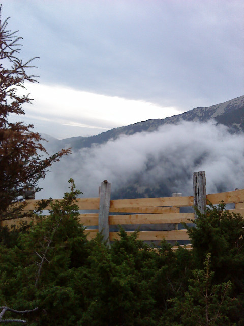 La brume monte